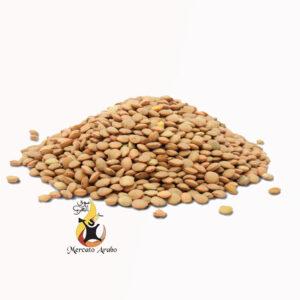 Lenticchie marroni 400 gr